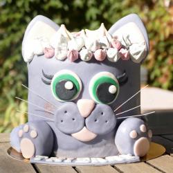 Gâteau Mitsie
