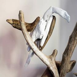 """""""Oiseau posé sur branche"""" Fabien GRENIER"""
