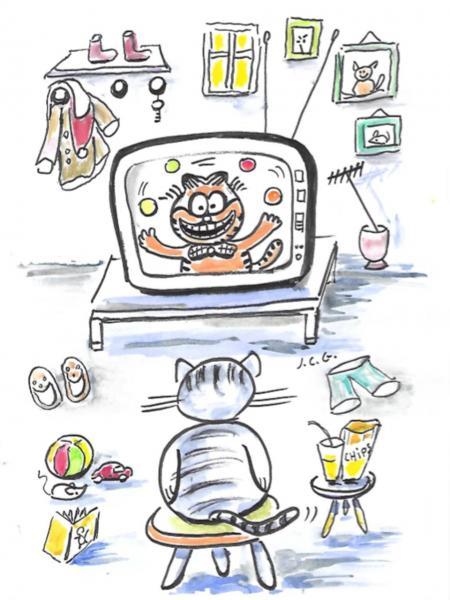 La télé du chat
